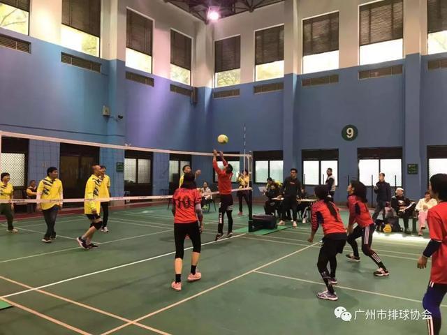 2019年廣州市「校友杯」排球、氣排球比賽圓滿結束 - 每日頭條