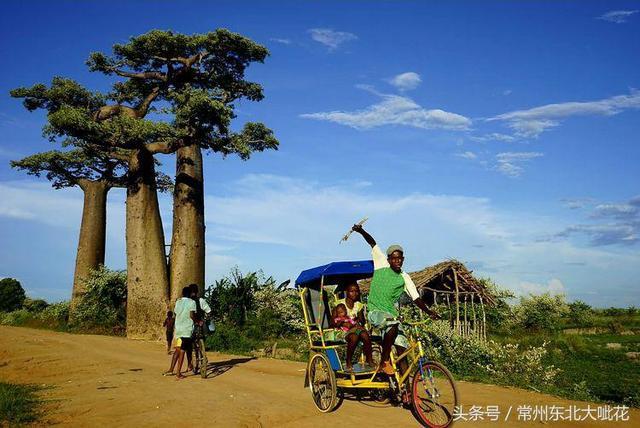 天堂孤島 _馬達加斯加 - 每日頭條