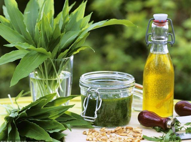 橄欖油除了炒菜,還有多種妙用你知道嗎? - 每日頭條