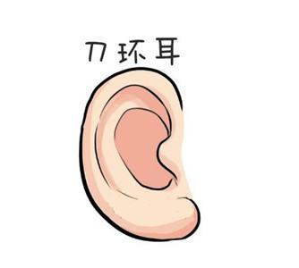 耳朵形狀看你的命運富貴吉兇 - 每日頭條