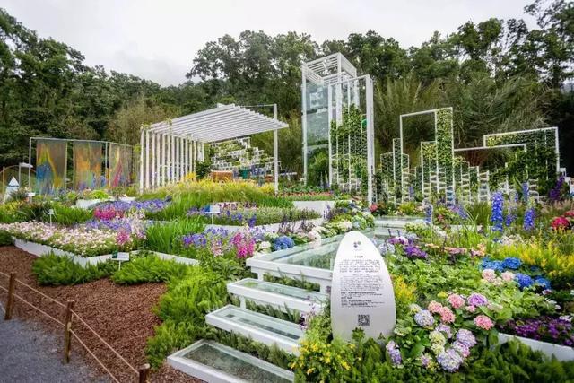 2019深圳花展明日開幕。40多個景點5大國際花園。還有這些好玩的! - 每日頭條