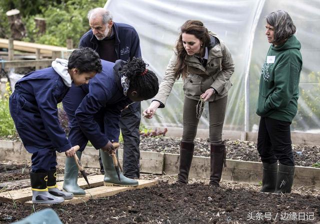 英國王室劍橋公爵夫人凱薩琳:這一生為愛而來 可以不工作 - 每日頭條