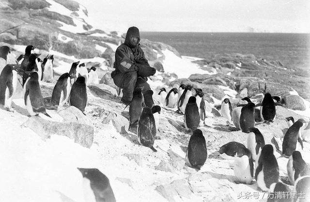 極地重生:1914年,英國人沙克爾頓艱難地完成了南極探險 - 每日頭條