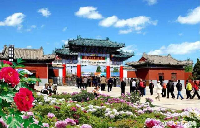 山東菏澤著名旅遊景點:美麗的曹州牡丹園 - 每日頭條