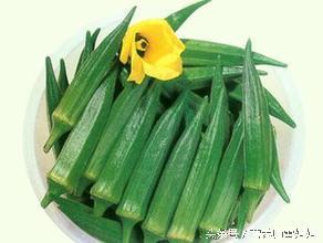 秋葵不能與哪些食物同食 - 每日頭條