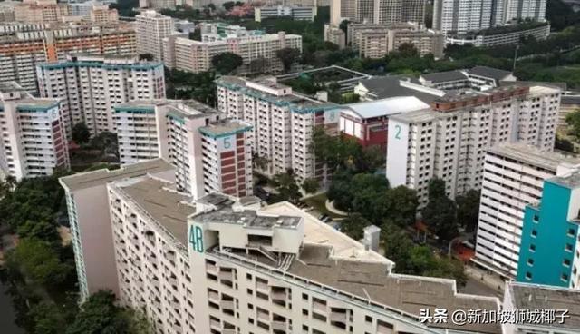 新加坡組屋又出新規定!租房。你需要注意這些! - 每日頭條