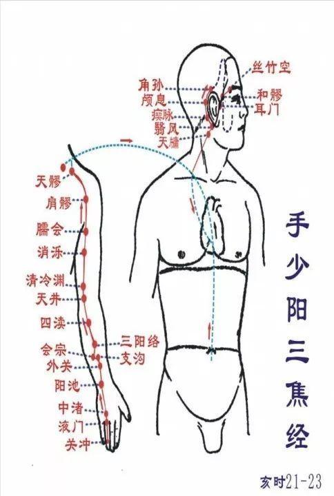 有了這些脈絡圖,這次終於把人體脈絡全看清啦 - 每日頭條