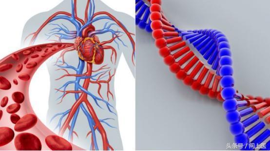 膽固醇超標不一定是生活方式不健康,還可能是遺傳性高膽固醇血癥 - 每日頭條
