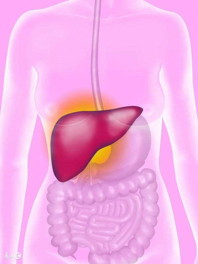 不同肝炎病毒的傳播方式 - 每日頭條