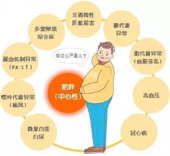 冬天是減肥好時機。記住4個訣竅。體重會一降再降。6萬人已驗證! - 每日頭條