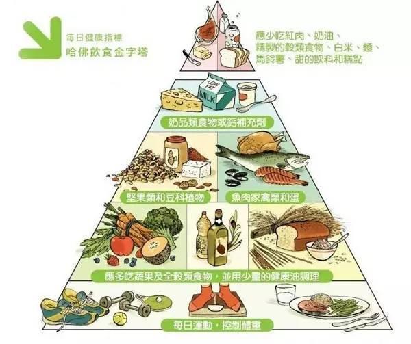 全食物調養秘笈你每日的「飲食金字塔」是正確的嗎? - 每日頭條