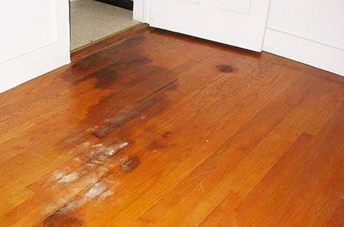 拯救家居木地板,泡水發霉緊急處理注意事項! - 每日頭條