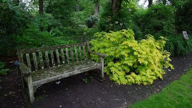 英國花園的獨到之處 - 每日頭條
