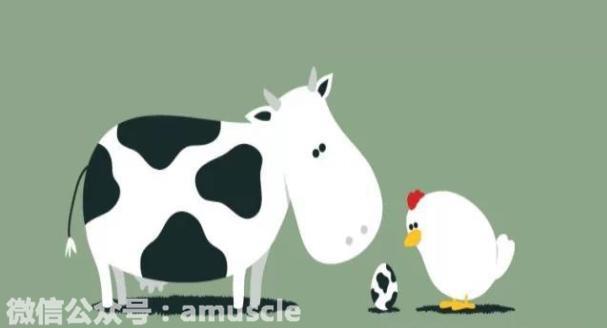 牛肉VS雞胸肉那個增肌效果更好 - 每日頭條