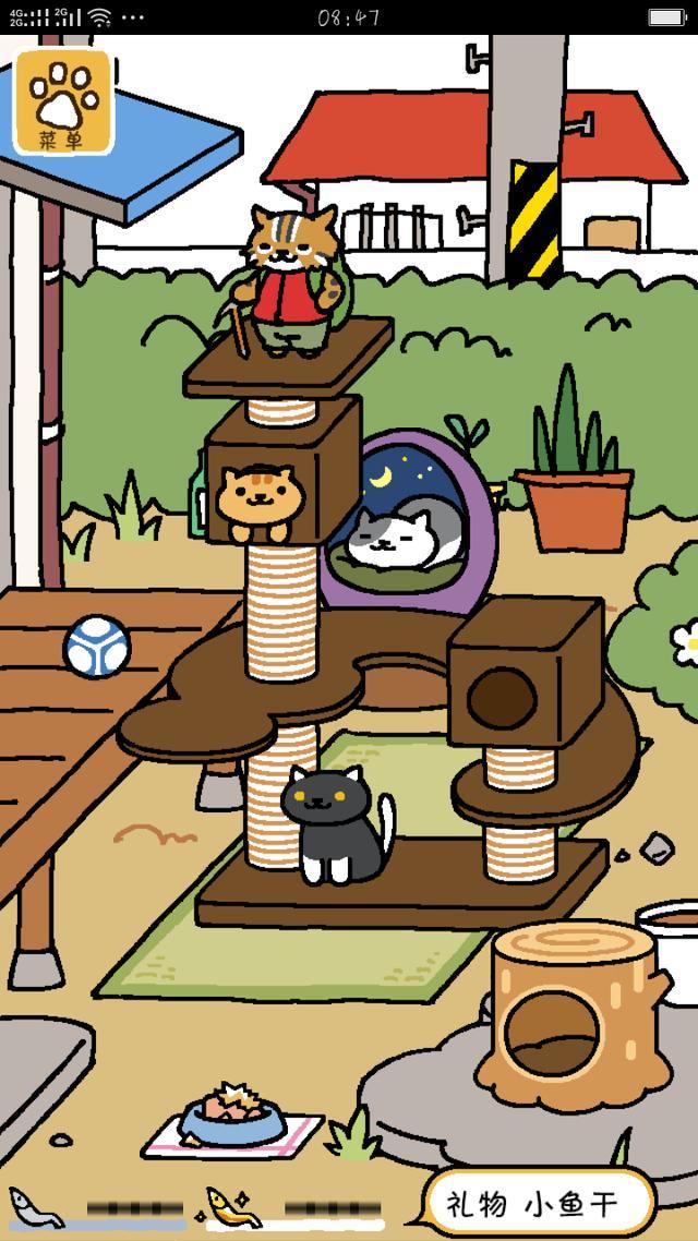 貓控必玩!幸福的被一大堆貓咪包圍! - 每日頭條