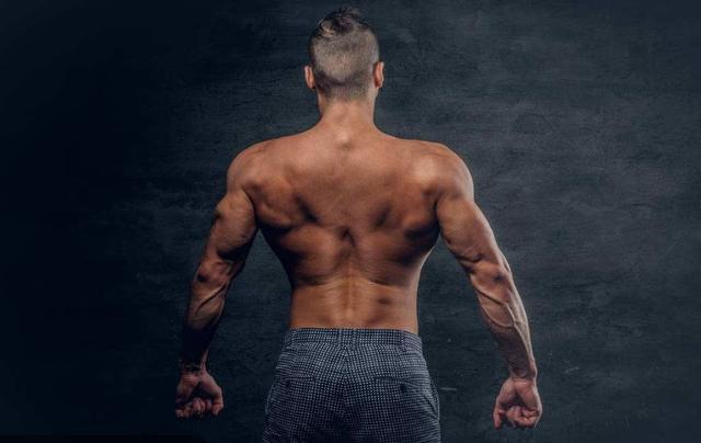 最全的肩膀訓練姿勢,教你虐出球形肩膀 - 每日頭條