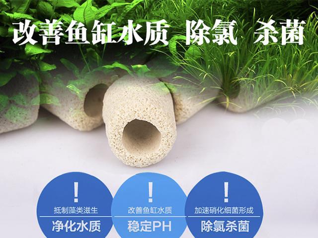 「常見問題」過濾在草缸中的作用及水草缸需要生化過濾系統嗎? - 每日頭條
