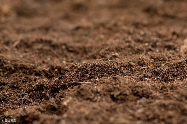 華夏文明的發源地。黃土高原是如何形成的? - 每日頭條