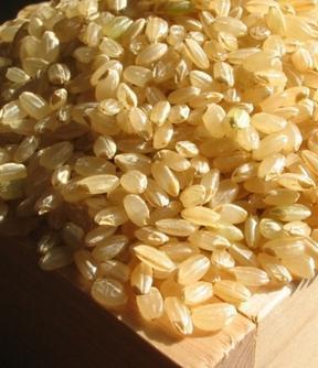 糙米的營養價值,不好吃但營養好 - 每日頭條