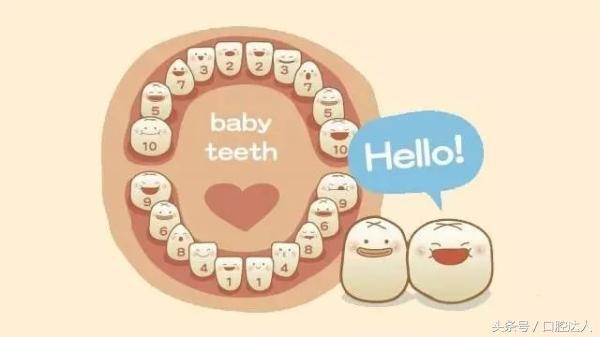 為什麼人家都是32顆牙齒?我只有28顆... - 每日頭條