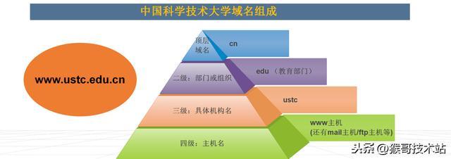 一文看懂:網址,URL,域名,IP位址,DNS,域名解析 - 每日頭條