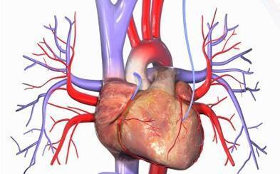 肺動脈高壓患者怎麼治療? - 每日頭條