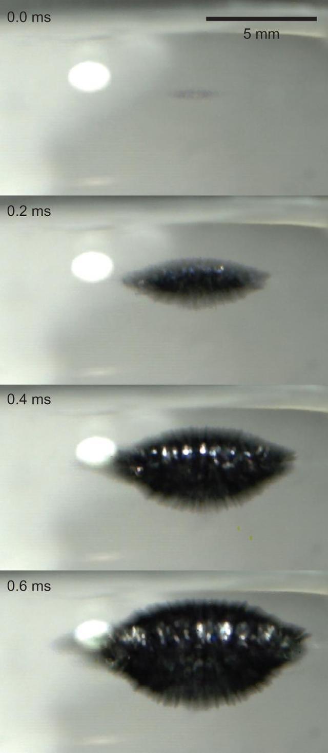 鈉-水爆炸反應的核心原理 - 每日頭條