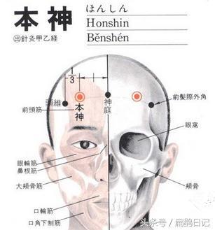 人體穴位大全——本神穴:頭痛,神經衰弱,小兒驚風,癲癇等 - 每日頭條