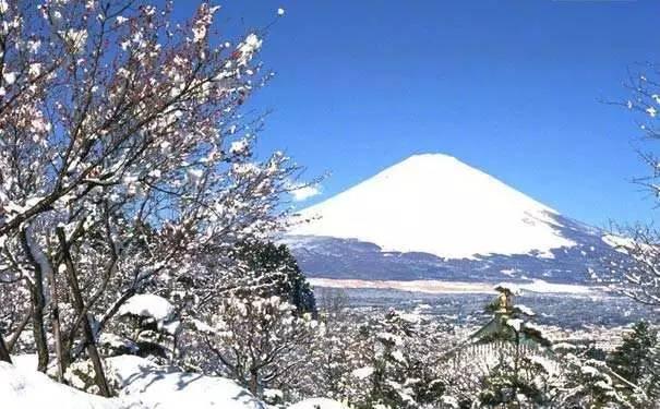 冬天一定要去日本的11個理由 - 每日頭條