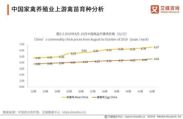 2019-2021年中國家禽消費市場大數據及飼養行業趨勢研究報告 - 每日頭條