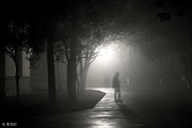 五種招鬼的樹 夜裡別在這些樹下逗留 - 每日頭條