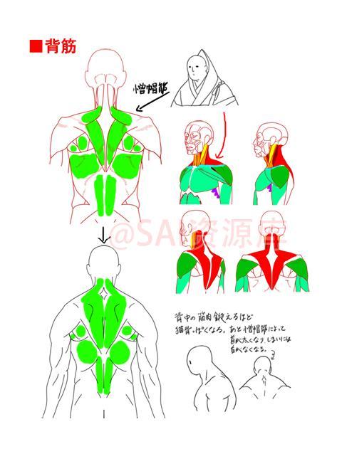 動漫男性肌肉的繪製方法借鑑! - 每日頭條