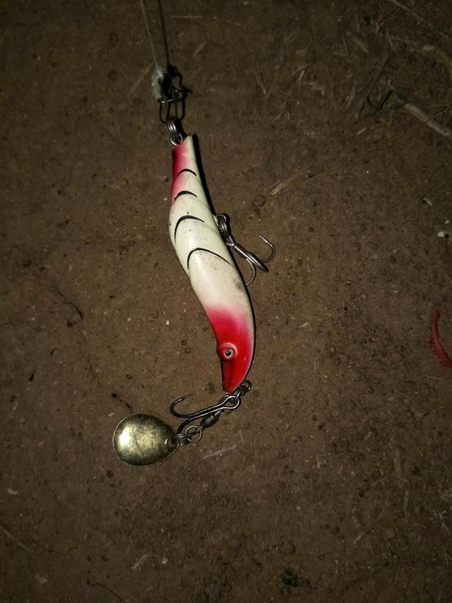 路亞釣魚,最常用的幾種操作手法 - 每日頭條
