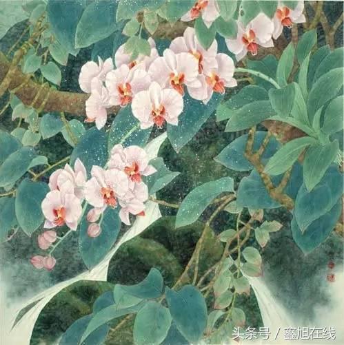 中國十大名花之一蘭花高潔典雅 與梅竹菊並列合稱四君子 - 每日頭條