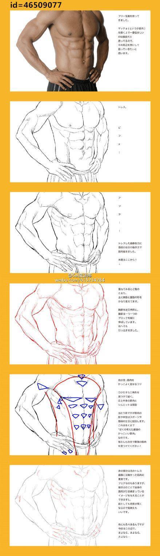 動漫插畫男生的腹肌肌肉群參考圖 雄風就靠它了! - 每日頭條