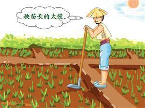 中華典故:「揠苗助長」簡說——寫給當下急於求成的年輕人 ...