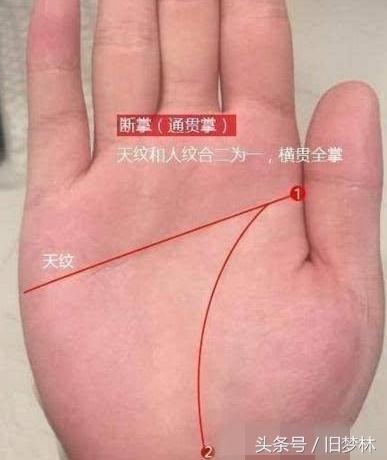 手相:雙手斷掌的優缺點有哪些? - 每日頭條