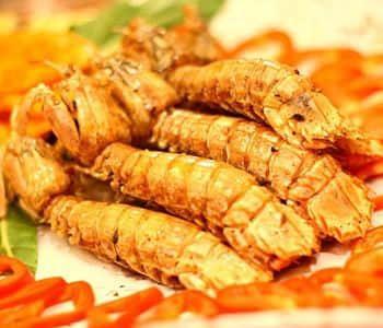 瀨尿蝦的家常做法 - 每日頭條