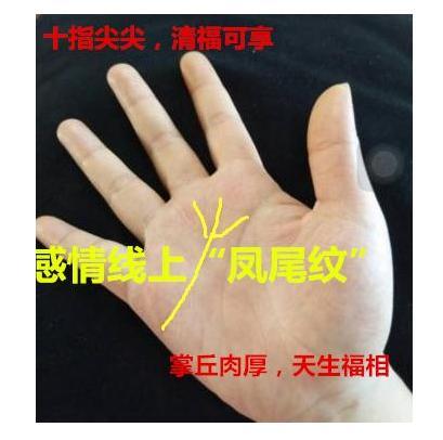 不得了的手相!手掌擁有此紋。註定命格貴氣。有福 - 每日頭條