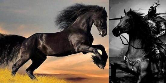 三國時期名馬排行榜,你最愛哪匹? - 每日頭條