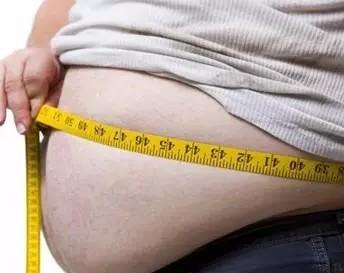 內臟脂肪怎麼減? - 每日頭條