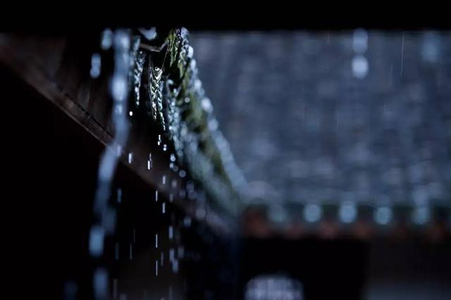 美文美圖崔長平 | 梅子黃時雨 - 每日頭條