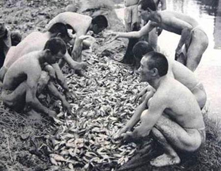 緬甸日軍有多餓?連中國士兵倒進糞坑的大米都搶著吃! - 每日頭條