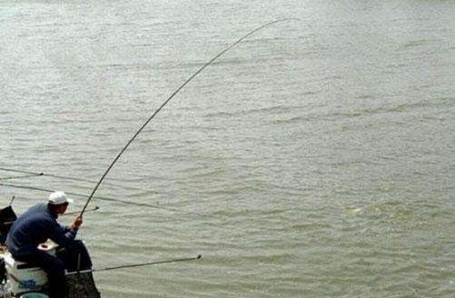 釣魚不用漂的繃尖子釣法。流水釣大魚特別好! - 每日頭條