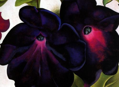 不要被這10種花漂亮的名字迷惑。它們背後的傳說真可怕 - 每日頭條