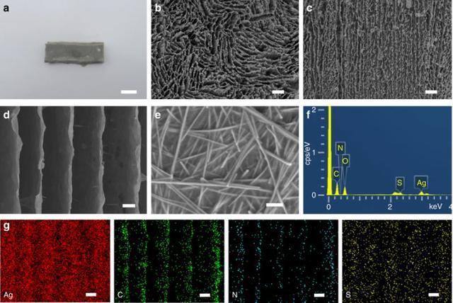 Nature Communications|合肥工大等研發自修復可拉伸彈性導體新材料 - 每日頭條
