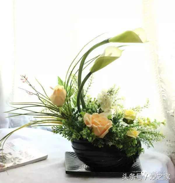 家中植物擺放的位置與風水 - 每日頭條