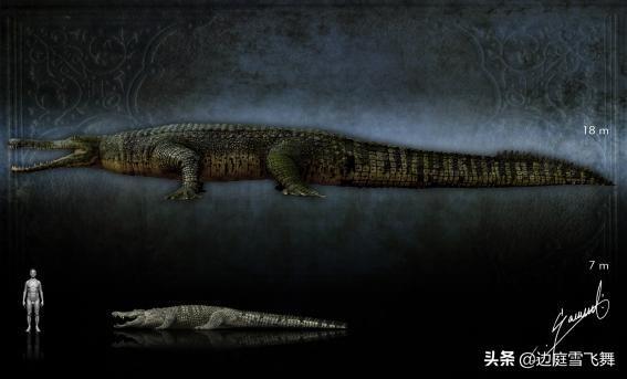 中國古代有鱷魚嗎?韓愈《祭鱷魚文》驅逐的是揚子鱷還是灣鱷? - 每日頭條
