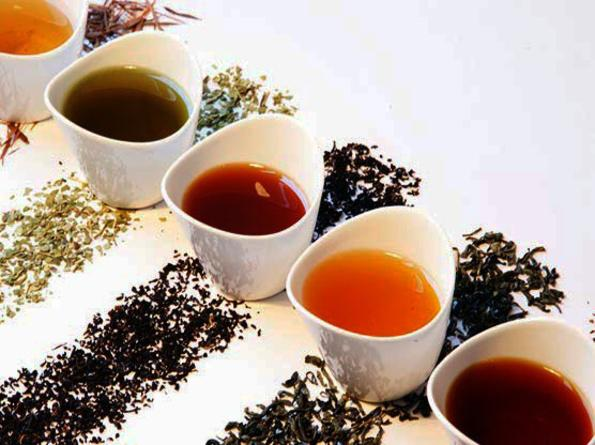 高血壓患者喝什麼茶?推薦5款降壓茶 - 每日頭條