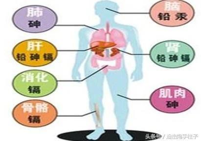 生活中保持警惕 小心重金屬中毒 - 每日頭條